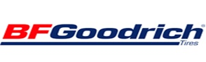 Автошина 185-65R15 88T BFGoodrich g-Force Winter (зима) BFGoodrich 18565R15 фото